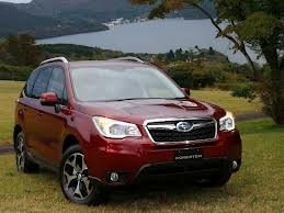 Forester (13-)